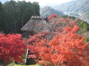 nagoya 270.jpg